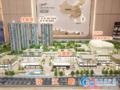 中南·滨江国际沙盘图