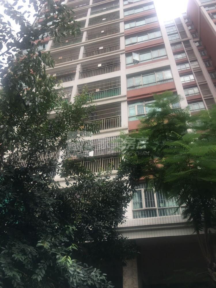 出租鸿晟豪庭3室2厅2卫90平米2000元/月住宅