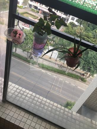 百悦湾 电梯房中楼层 精装 够5唯一 税费低 随时约