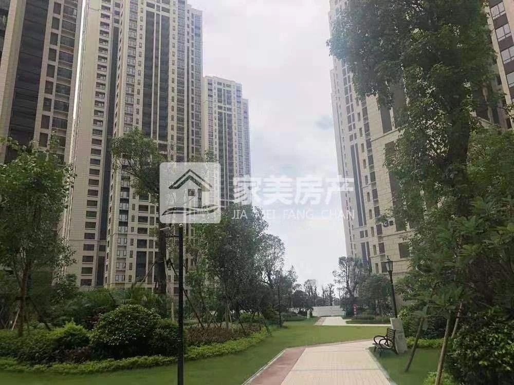 西江新城 江景洋房 拎包入住 周边设施配套齐全