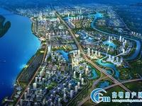 西江新城规划