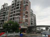 新收笋盘 荷城电梯现房出售 单价5字头 首付低至5万 满2年 总价48万