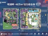 西江新城 大型商业街 时尚公寓 单价紧8200不容错过