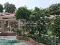 碧桂园二期门前200多方的大花园 精装3房 家私家电齐全 拎包即可入住