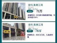 河江新区,金科 集美江湾,明火餐饮商铺,总价60万起