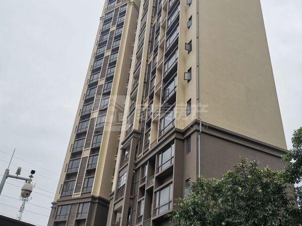 金骏广场 南向精装电梯楼 大三房 小区配套成熟 采光好实用面积大 单价只需8字头