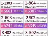 三洲新城区一首楼盘 高建广场 毛坯3房单位 团购总价46万 随时约看!