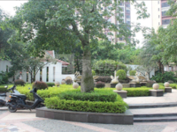三洲新城 优悦城毛坯两房两厅双阳台靓楼层 够二低税费 83方仅售55万