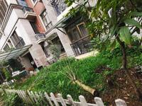 碧桂园二期 够5年 随时可约 带90方花园 超级舒适 格局方正 随时可月
