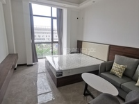 三洲 单身住宅性质公寓 一房一厅 精装修 仅售21万