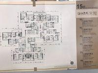 望江单位 君御海城 单价7字头 带新城校区房 中楼层南向
