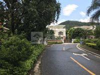 碧桂园300方花园独立别墅,够5年过户费税费低,地段靓,装修豪华,拎包入住