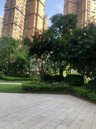 超级笋笋 君御海城20楼 毛坯超大3房 单价6600一方 如一次性价钱还可以谈