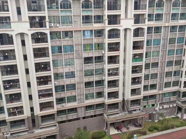 首付10万 河江小区电梯楼 南向望花园 格局靓 真实房源
