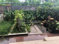 秀丽花园联排别墅 精装250方 200方大花园 背靠秀丽河 单价15200元 方