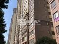西江新城香格里 名校围绕 首付20万带精装 中层三房 全新未住 96万包过户