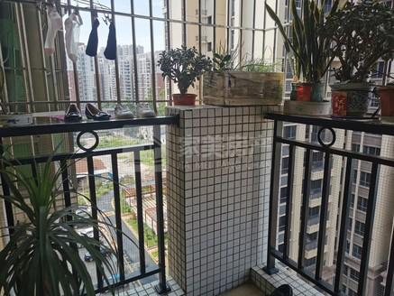 荷城名豪苑 电梯9楼 精装3房 双阳台对流 够五年 过户只需交契税 随时看房