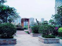 笋 山林水语 复式单位 实用面积162方 带100方花园 随时约看