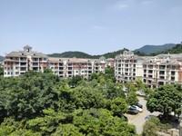 碧桂园二期 豪华装修 静中带旺 环境舒适 低楼层 单价只需6字头!