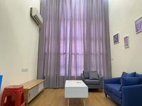 S大润发商圈 电梯高档公寓 设施齐全 复式仅租1480元